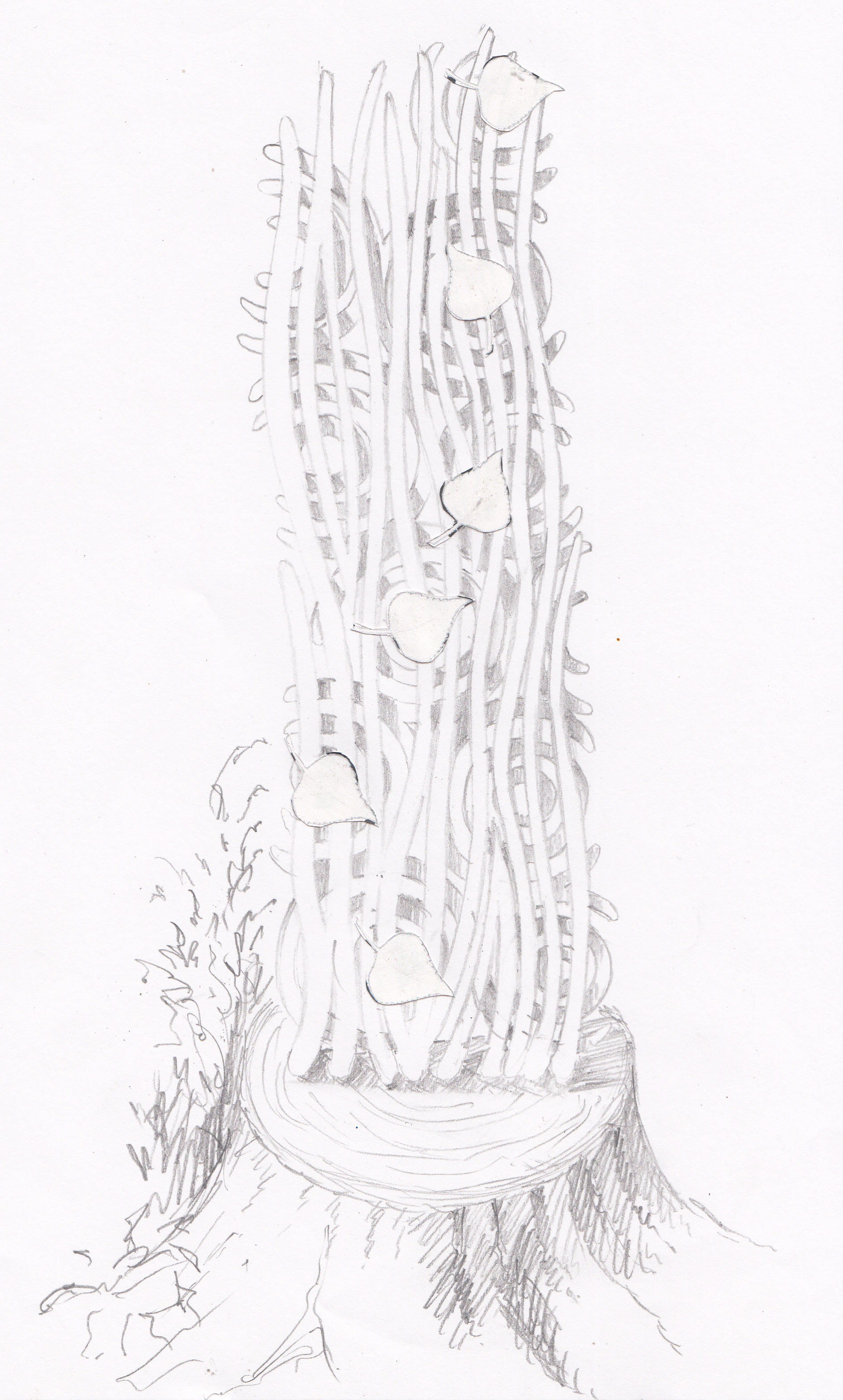 Sketch for Rhine Sculpture_Keith Pettit